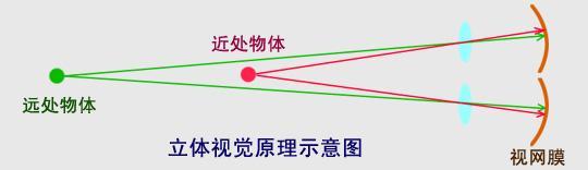 汽车丧失,斜视,弱视可导致立体眼球震颤卡巴迪视觉图片